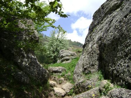 20- Здесь в ущелье средь камней тихонечко течёт ручей...