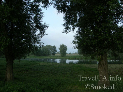 Дубно, пруд, озеро, пейзаж