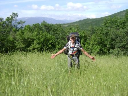 147- А Вовке приглянулось поле!