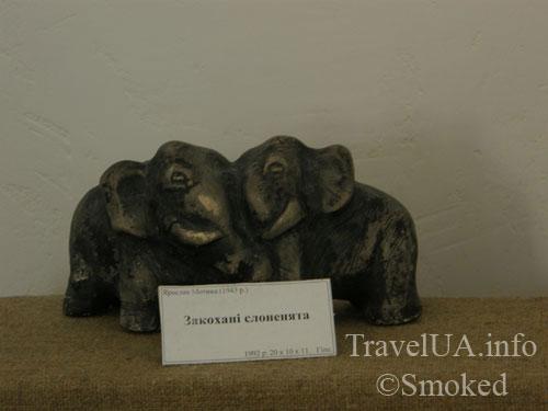 zakohani-slonenyata