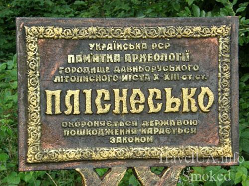 Плиснецк, Подгорцы, городище