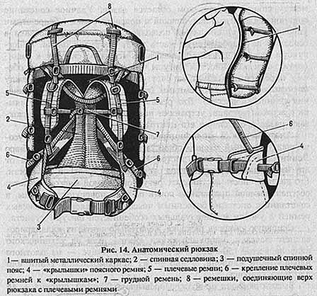 anatom-sovok
