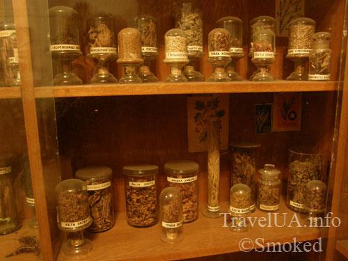 Львов, музей-аптека, травы